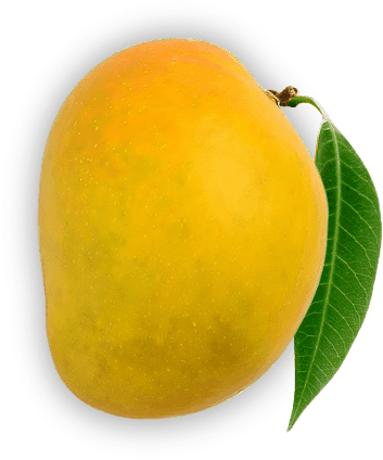 Chemically Ripened Mango